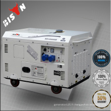 BISON Générateur de marque China Zhejiang, générateur de 15kv, générateur diesel 15 ch