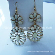 Мода ювелирные изделия/смола камень серьги мода красочные/мода крюк серьги падения (NPE1007)