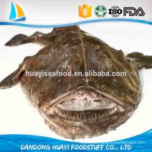 Frische gefrorene Fische ganze Seeteufel meistverkaufte Produkte