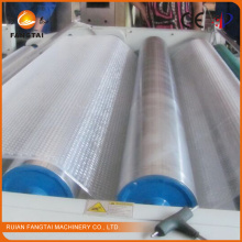 PE Air Bubble Wrap Making Machine Ftpe-800 (CE certification)