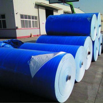 Big roll blue PE tarp