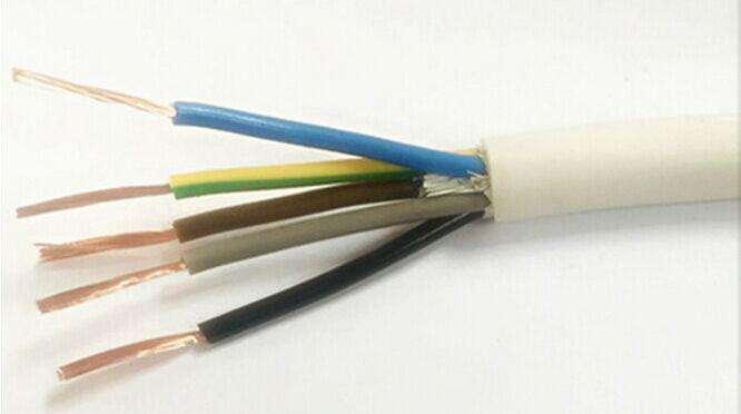 Control Signal Transmission Line