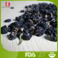 high quality black goji berries/Chinese black wolfberry/black medlar