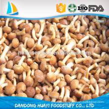 frozen nameko mushroom from china food supplier