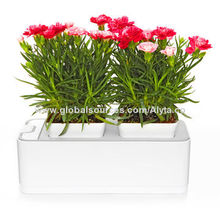 Automatic Hydroponic Grow Furniture Household Goods Greenhouse Equipment Kit