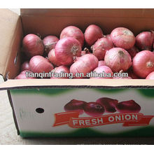 onion supplier