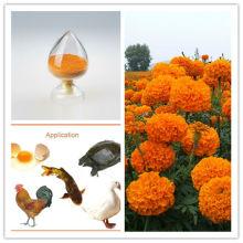 Natural Feed Additives Feed Grade Marigold Extract Lutein Powder