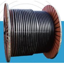 Stahlgeflechtschlauch RTP