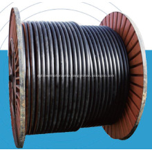 Steel Braided Composite Hose RTP