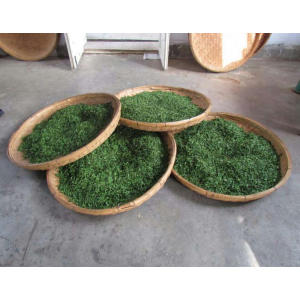 China for Pure Green Tea Cold green tea for weight loss supply to Senegal Importers