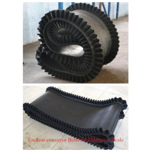 Mobile Portable Rubber Conveyor Belt with Good Price