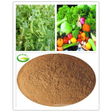 Powder Soluble Amino Acid Fulvic Acid Fertilizer for Agriculture