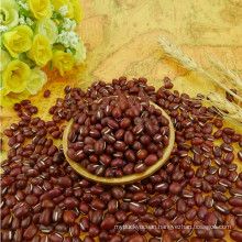 2015 Chinese dried small red bean machine cleaned
