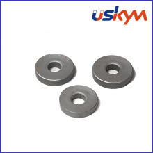 China Factory Ring Ferrite Magnets (R-013)