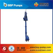 Pompe verticale à arbre long