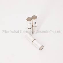 Special Electrode Piezo Tube