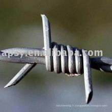 Clôture de fil barbelé
