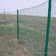 Chain Link Wire Mesh Fechten, PVC beschichtet Kette Link Zäune