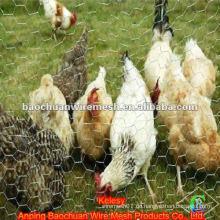 Sechskant-Hühnerdrahtgewebe