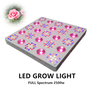 Patente regulable 2500W LED Grow Light