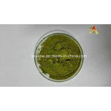 Polvo de Moringa Oleifera de alta calidad natural