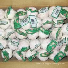 Nouvelle boîte en carton Emballage Ail blanc chinois