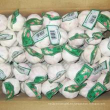 Nuevo embalaje de cartón blanco ajo chino blanco