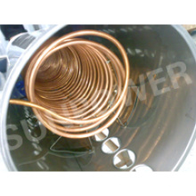 Copper Coil Solarwarmwasserbereiter (CE & SOLAR KEY MARK & SABS)