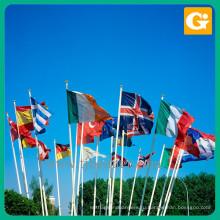 Пользовательские формы национального флага страны безопасности