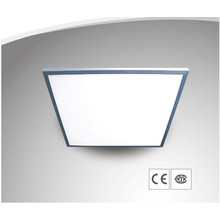 LED Panel Light with CE and Rhos 55W