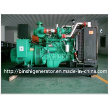 250kw Biogas Power Generator Sets
