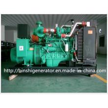 250kw Generadores de energía de biogás