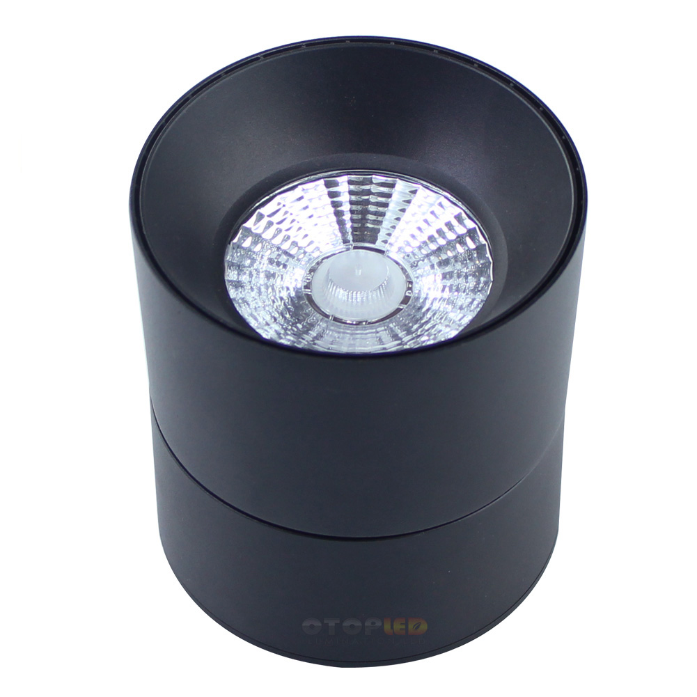 25W Adjustable Led Down lights