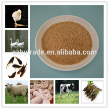 Feed additive for fighting cock choline chloride 60% corn cob