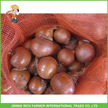 Exporter l'oignon en Bulk Chinese Round Onion