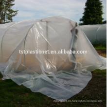 Película de poliéster de invernadero de 200 micras
