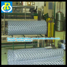 chain link fence for garden buildings