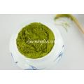 Cápsula Matcha Orgânica Bambu Whisk Matcha Chá