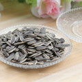 2017 new crop white stripe sunflower seeds hybrid sunflower seed for human consumption
