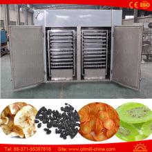 Industrielle Obst- und Gemüse-Trocknungsanlagen Dehydrator