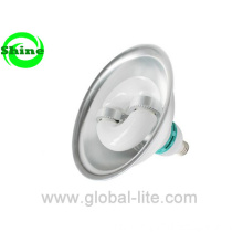 Self Ballasted Induction Lamp