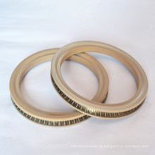 Spring Energized Seals para Industrial da China