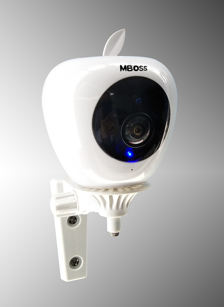 indoor 1080P wireless camera