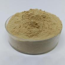 Earthworm protein powder Chinese medicine