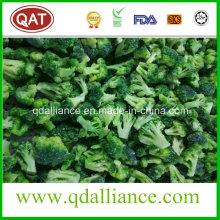 Brócoli orgánico congelado IQF con certificado Brc