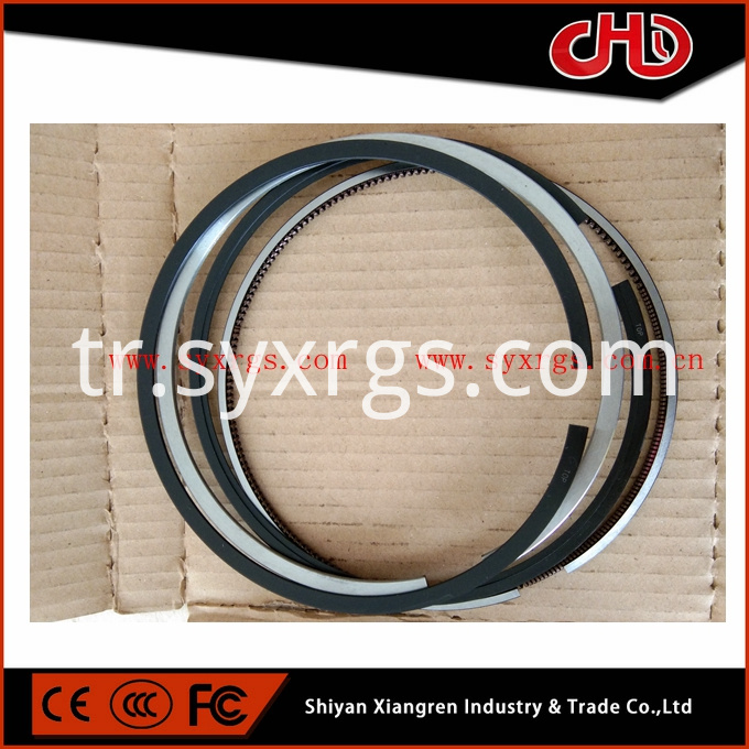 4089810 Piston Ring Set