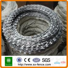 galvanized barbed wire(BWG 12x14, BWG 16x16)