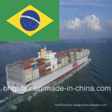 Shipping Forwarder From China to Itajai, Vitoria, Curitiba, Santos, Canoas