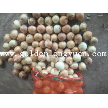 Export Quality Fresh New Crop Yellow Onion