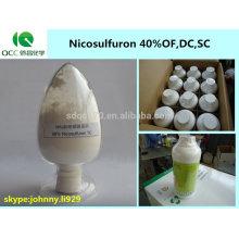 Produit phytosanitaire / Nicosulfuron sc, nicosulfuron 40% OF, 40% DC, 40% SC / 40 g / L OD herbicide -lq